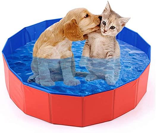 piscinas-para-perros-catalogo-para-montar-tu-piscina-on-line